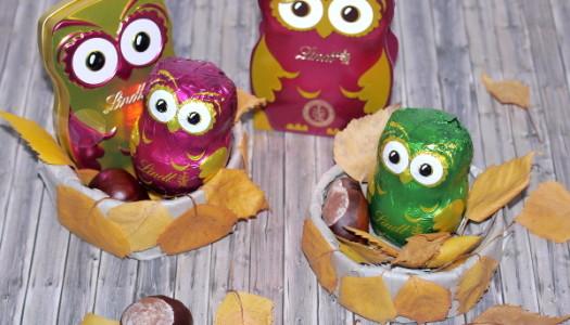 Herbstgeschenke mit Schokolade DIY {Produktvorstellung}