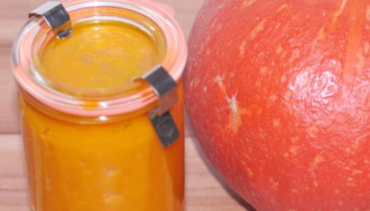 Kürbispüree: Rezept, Verwendung und Einkochen