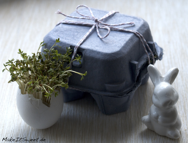 Kresse Eierschale Ostern DIY Geschenk Eierkarton Dekoration Deko