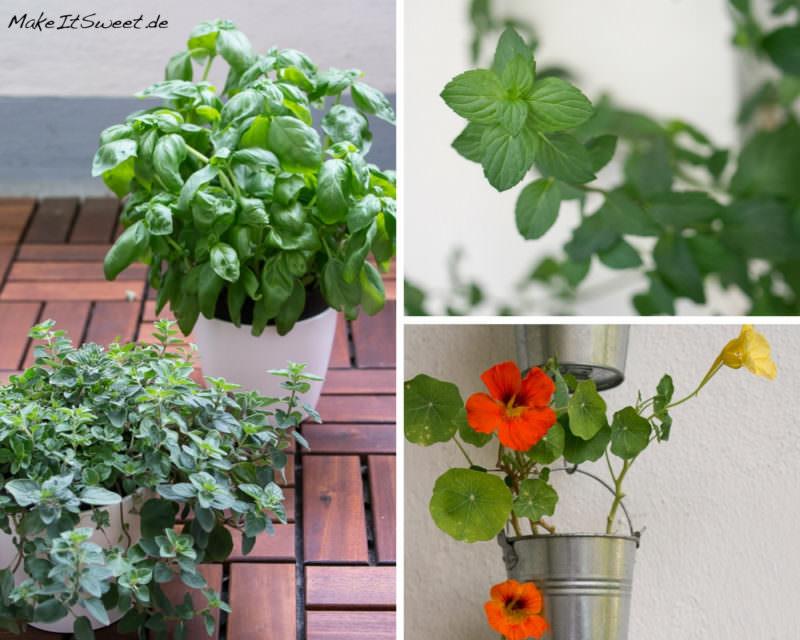 Pflanzen Balkon Basilikum Oregano Minze Kapuzinerkresse Sommerzeit ist Balkonzeit meinkleinergarten